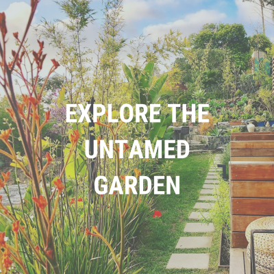 Explore the Untamed Garden