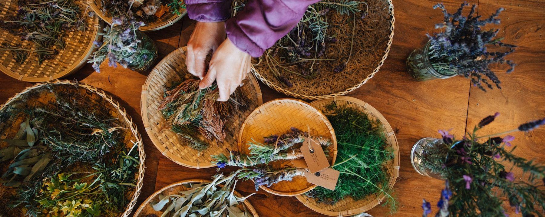 a person handling herbs
