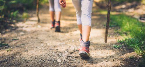kids hiking with walking sticks