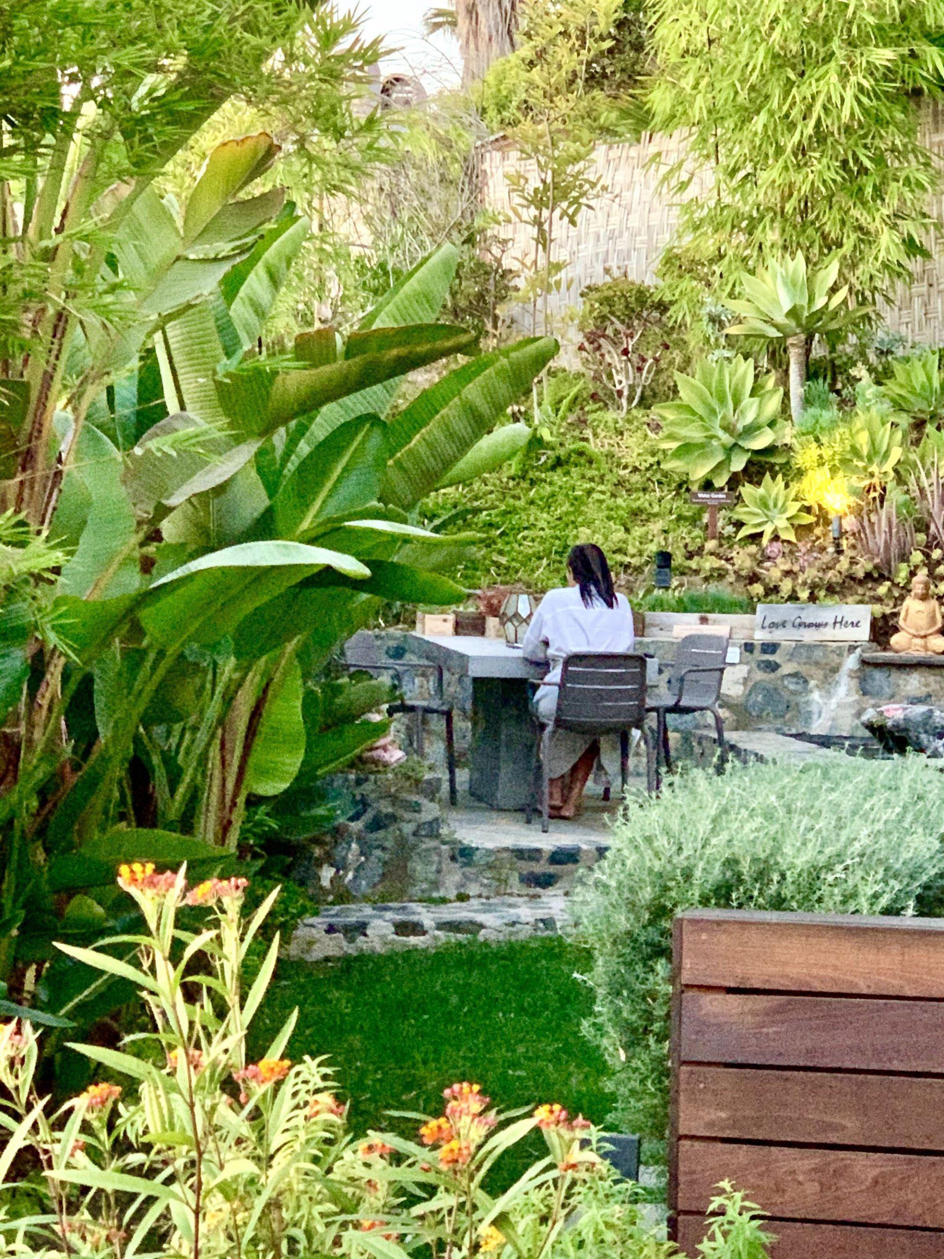 Guest in Garden