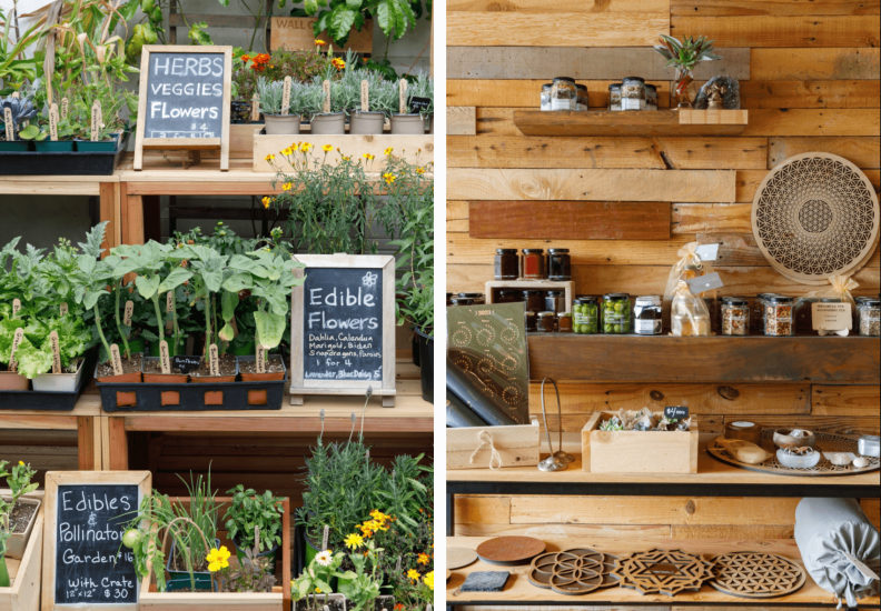Herbs, flowers, and spices wall